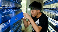 Image of Course: Introduction to Vertical Mud Crab Farming